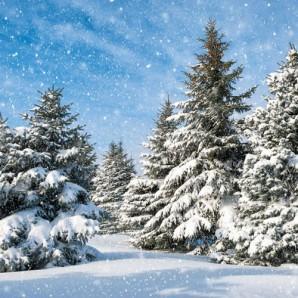 CraftEmotions servetten 5st - Bomen in de sneeuw 33x33cm Ambiente 33305115