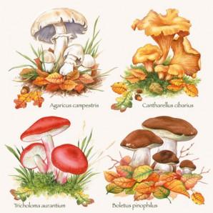 CraftEmotions servetten 5st - Verzameling paddenstoelen 33x33cm Ambiente 13307410