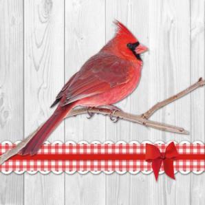 CraftEmotions servetten 5st - Kardinaal vogel 33x33cm Ambiente 13308780