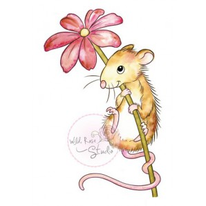 Wild Rose Studio's A7 stamp set Mouse and Flower CL494