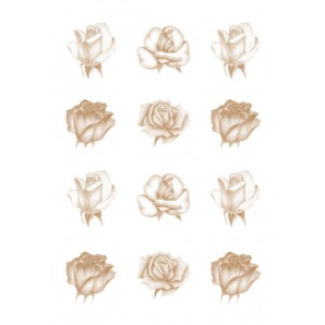 Vellum rozen koper 62550