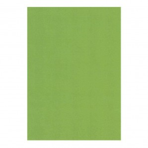Groovi Parchment Paper A5 Christmas Green