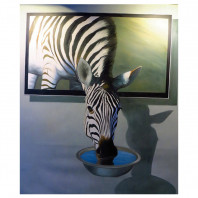 Diamond Painting ronde steentjes zebra
