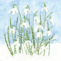 CraftEmotions servetten 5st - Sneeuwklokjes in sneeuw 33x33cm Ambiente 13309610