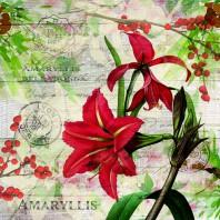 CraftEmotions servetten 5st - Rode amaryllis 33x33cm Ambiente 33310630