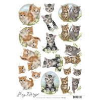 3D Knipvel - Amy Design - Cats 11457