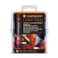 Chameleon Color Tops Warm Tones
