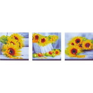 DIAMOND DOTZ Sunflower days DD14.001