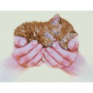 DIAMOND DOTZ Precious Kitten DD7.011